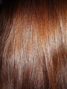 1200px-Woman_with_long_brown_hair,_close-up_view